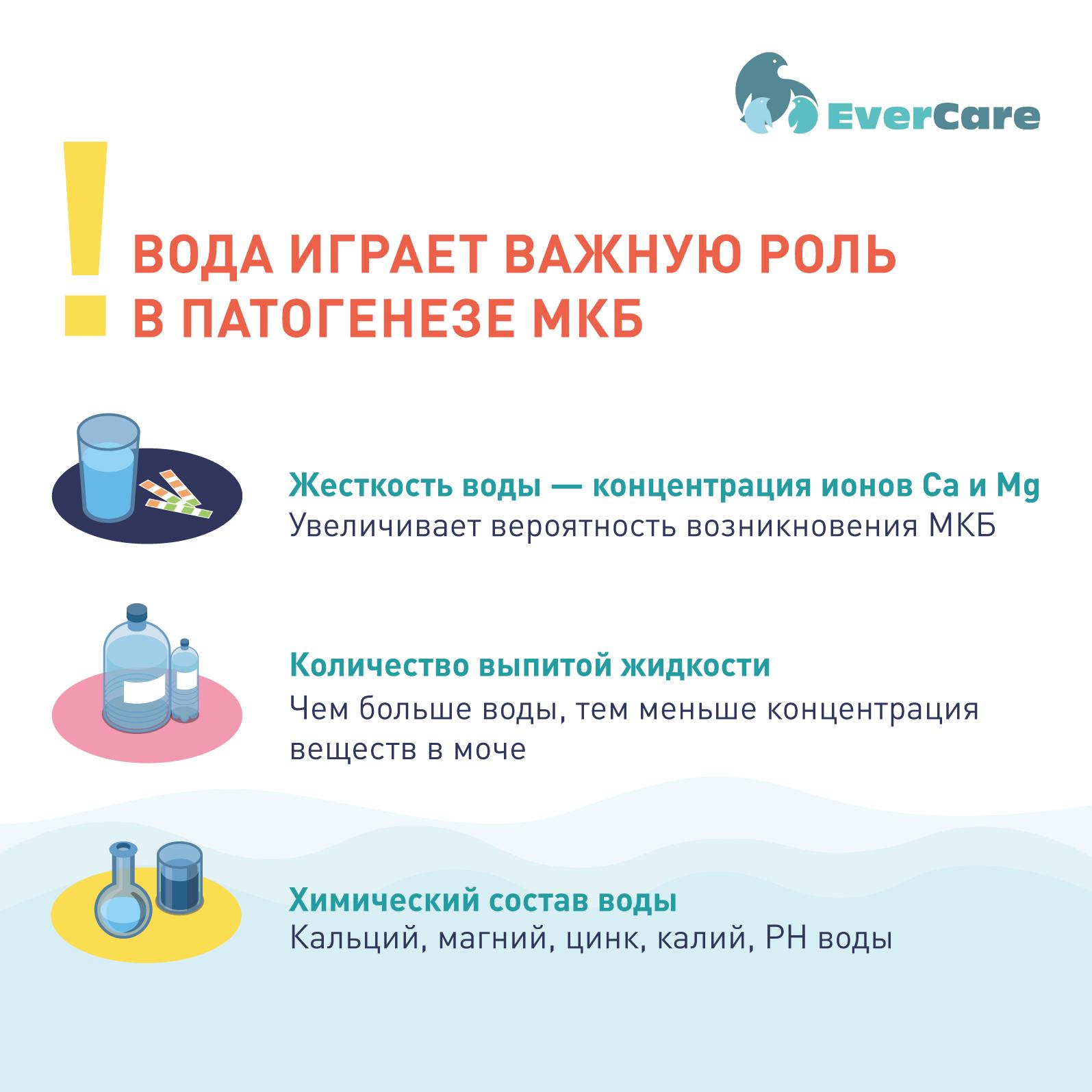 Профилактика и метафилактика мочекаменной болезни. Вода и питьевой режим