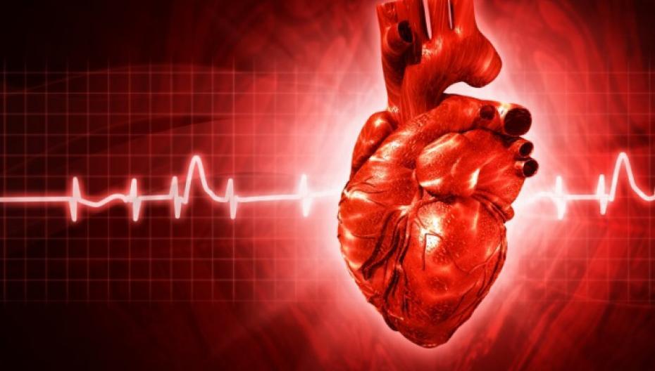 МТС и «Медси» выпустили мобильное приложение для «сердечников»