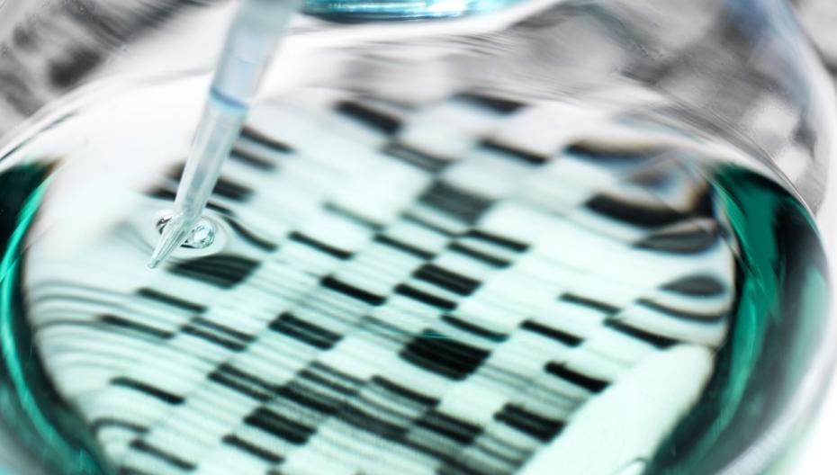 Начато создание карты иммунной системы человека