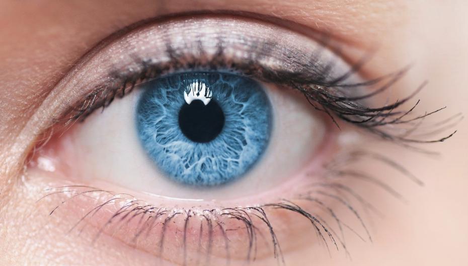 Израильский стартап разработал искусственную роговицу, обещающую вернуть зрение миллионам людей