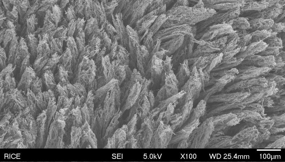 Технология, которая позволяет отфильтровывать частицы COVID-19 из воздуха