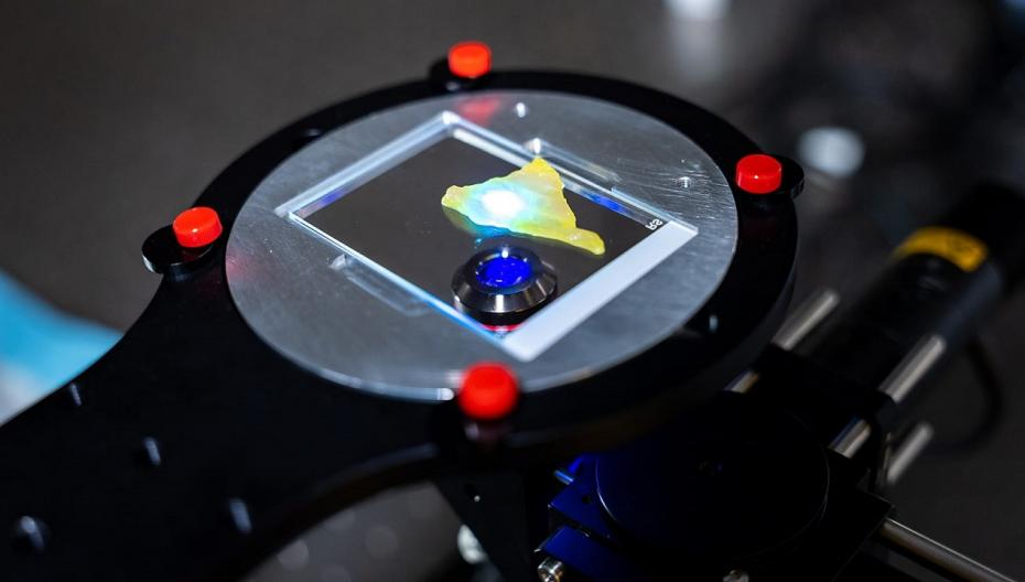 Микроскоп, который может за минуты определять границы опухоли