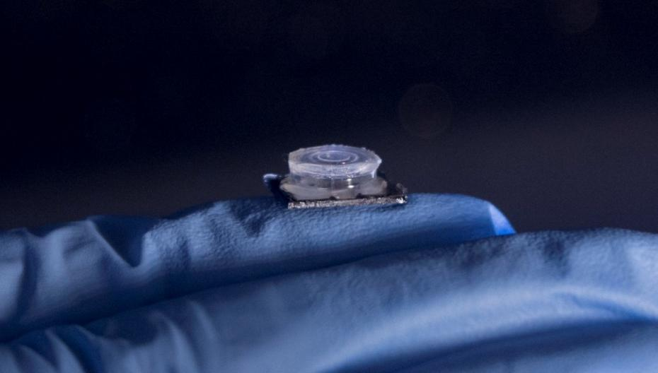Быстрый ПЦР-чип для диагностики инфекционных заболеваний