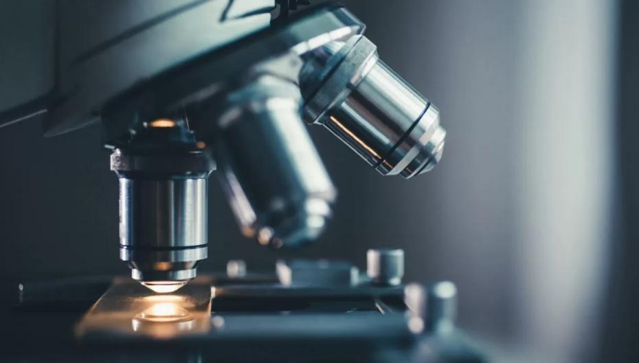 Новый тип микроскопа, который может видеть сквозь череп