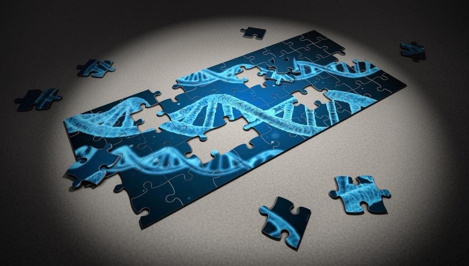 Ученые NVIDIA и Гарвардского университета совершили прорыв в области геномики