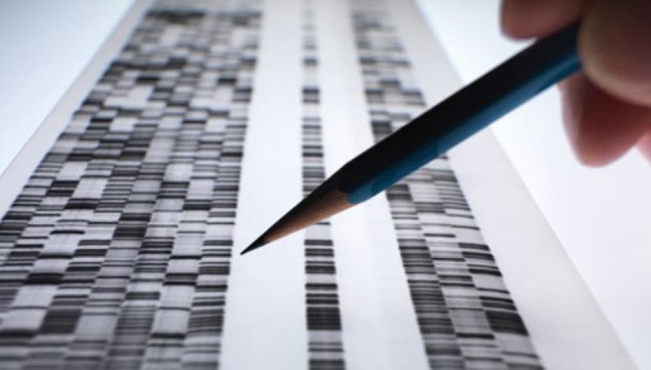 Приложение, помогающее анализировать биомедицинские образцы