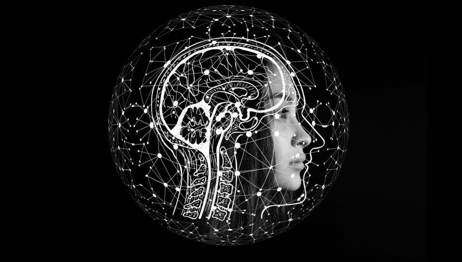 Диагностировать болезнь Альцгеймера по МРТ-сканам