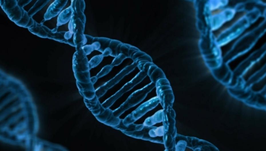 """В США стартовала программа массового генетического тестирования """"Все мы"""""""