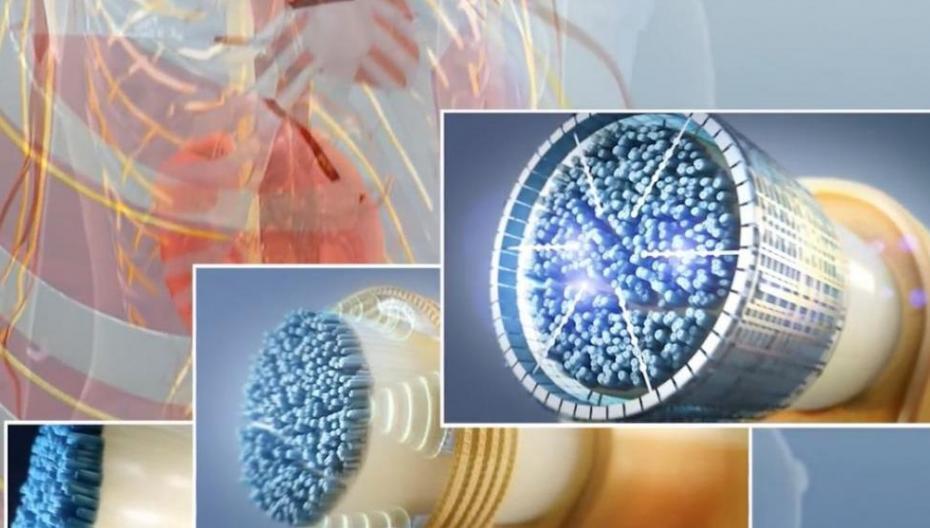 Verily (Google) и GSK начали совместный проект в сфере биоэлектроники