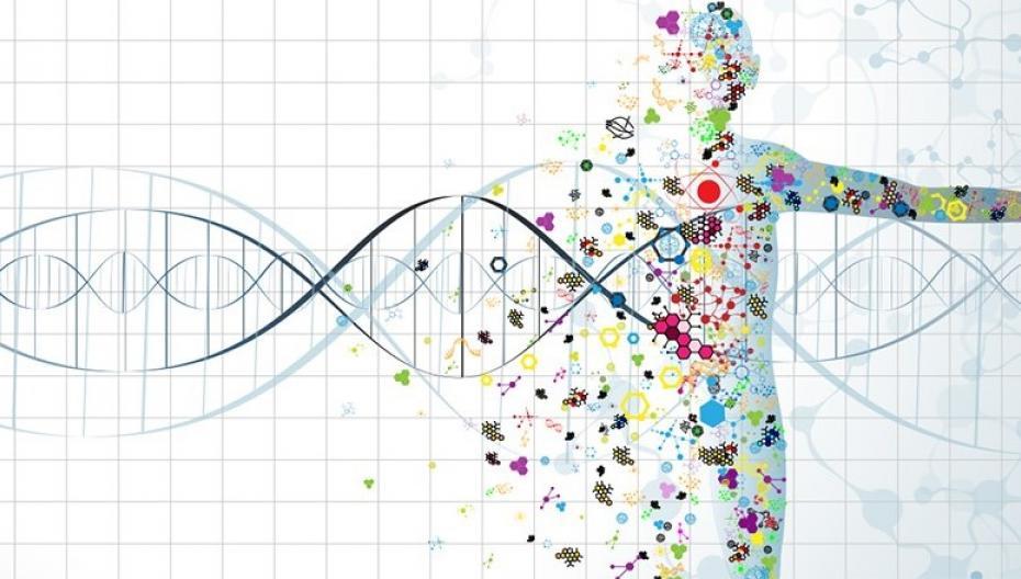 В 2022 году объем рынка точной медицины достигнет $100 млрд