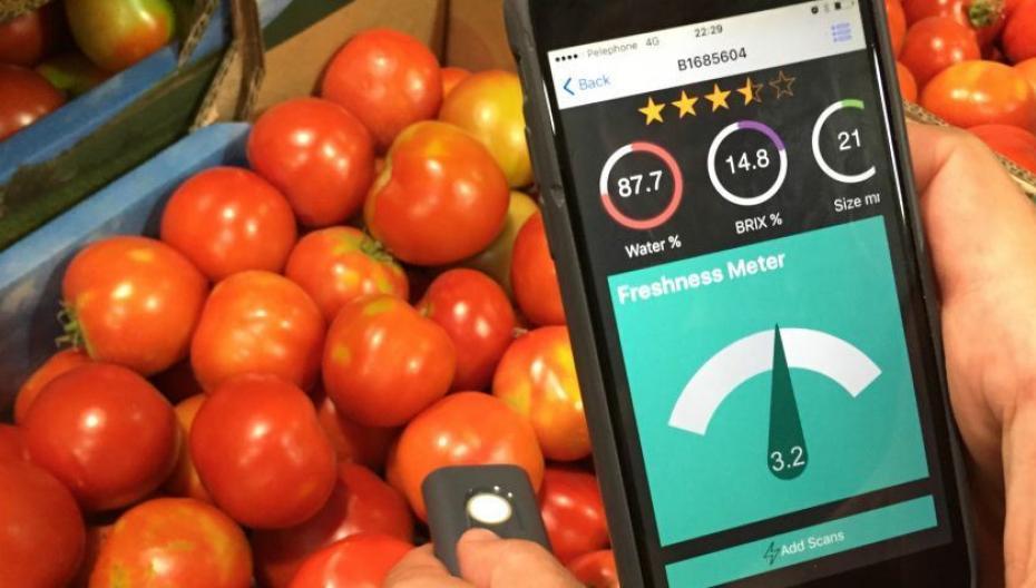 Приложение проверит фрукты и овощи на свежесть и качество