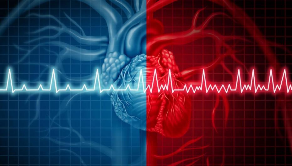 CardioComm выводит на рынок новый портативный ЭКГ-прибор