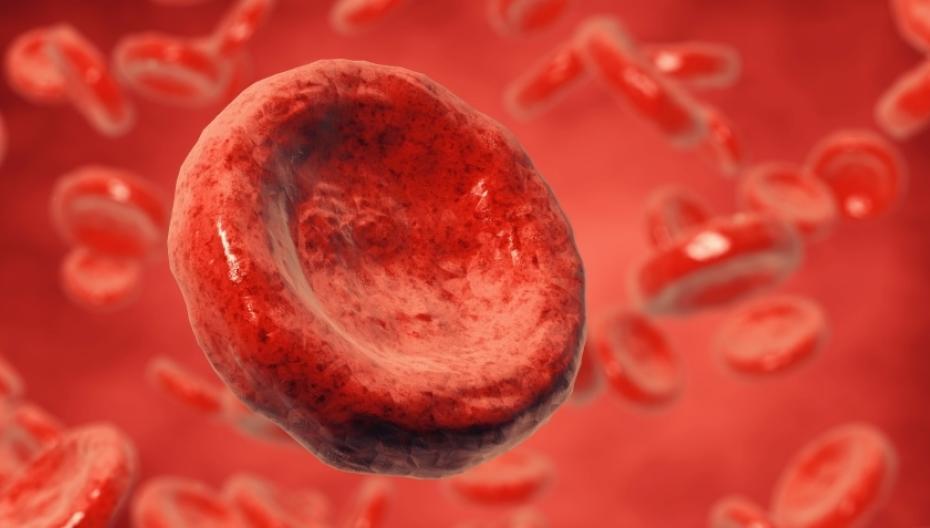 CoaguChek Vantus: Беспроводное устройство для контроля коагуляции крови