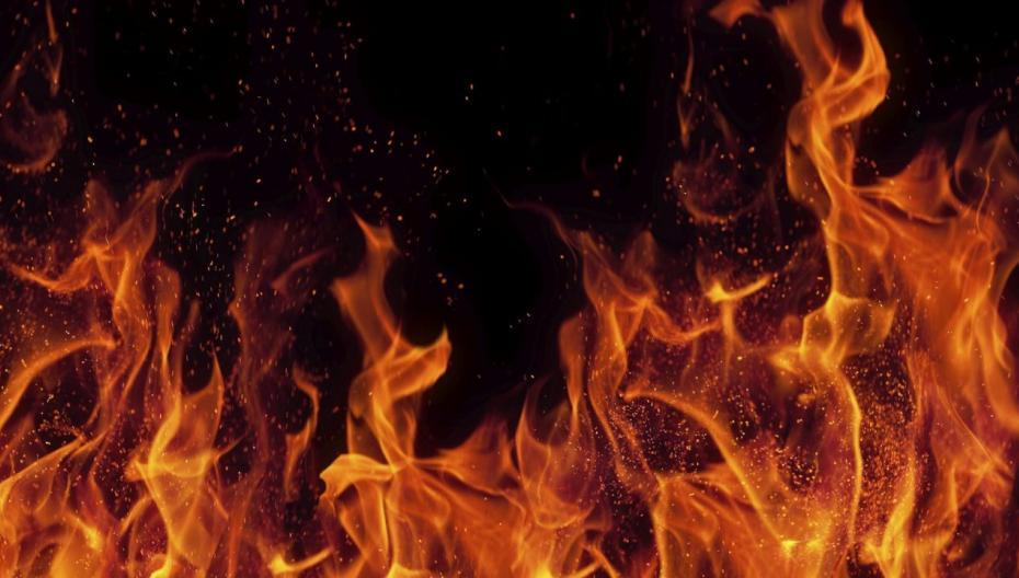 Приложение, помогающее лечить ожоги
