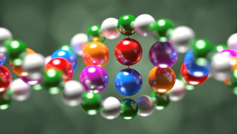 Программа, обещающая быстро идентифицировать человека по ДНК