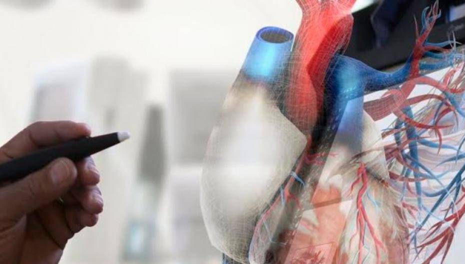 Система 3D-визуализации медицинских изображений от EchoPixel