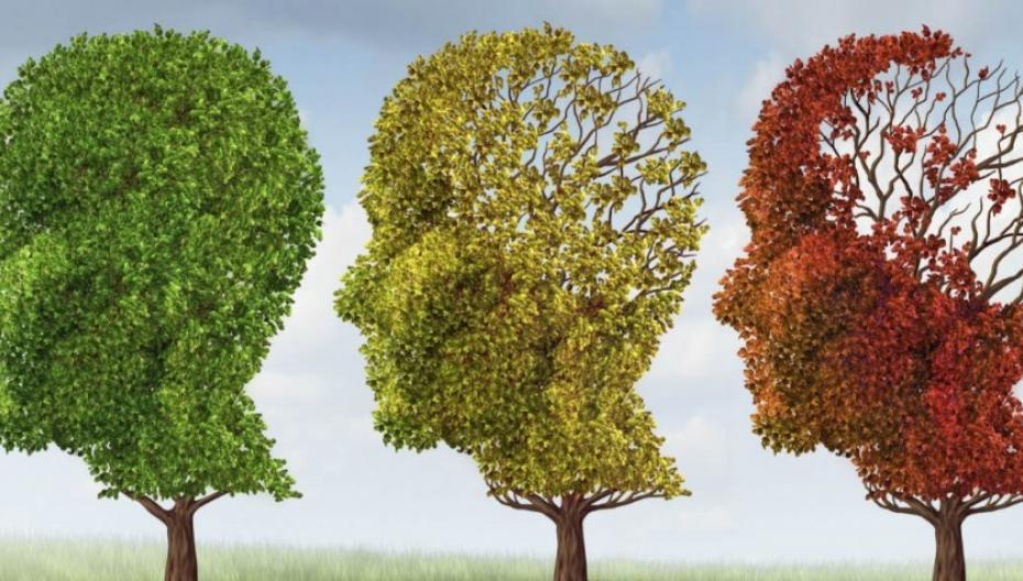 Общеевропейская программа по разработке новых методов мониторинга психических заболеваний