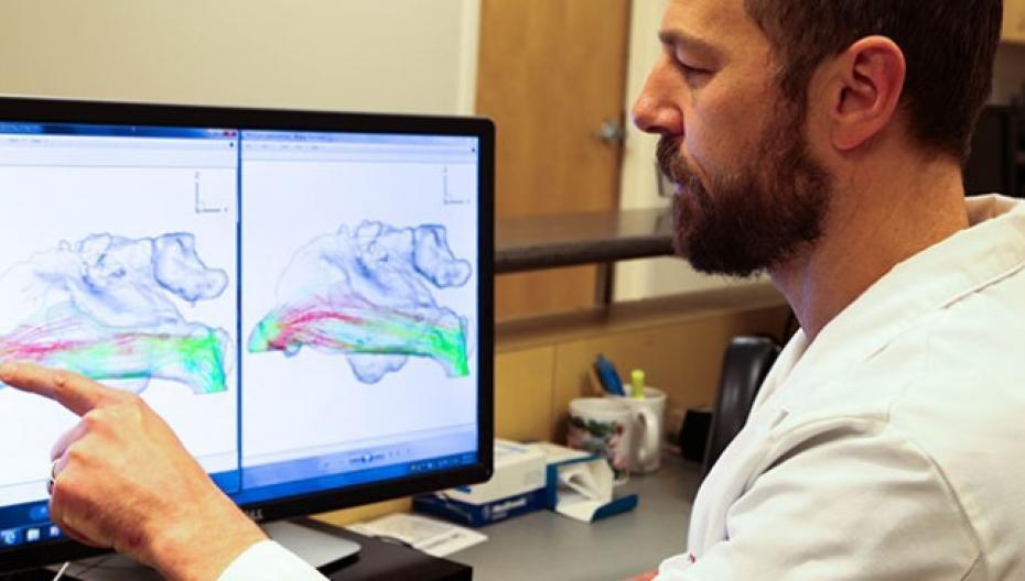 Компьютерный симулятор позволяет избежать операции носовых ходов