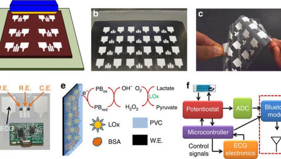Новый гибкий сенсор диагностирует болезни, анализируя пот