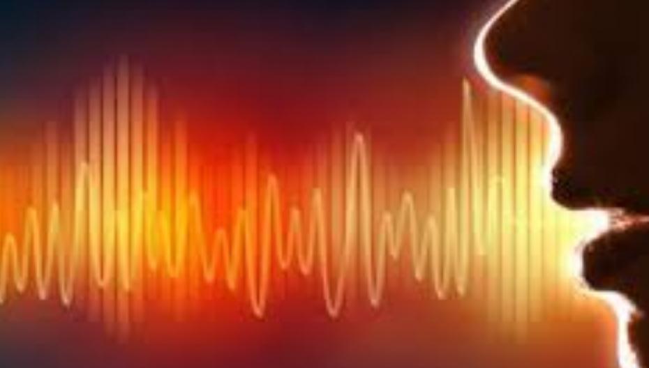 Офлайновая система распознает голос с точностью в 97%