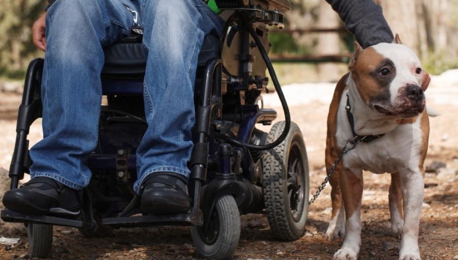 """""""Умная"""" подушка для инвалидной коляски помогает избежать пролежней"""
