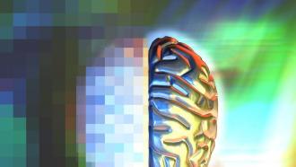 Свет и звук для очистки мозга от амилоидных бляшек