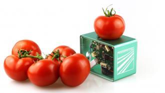 Портативный сканер для определения срока годности пищевых продуктов