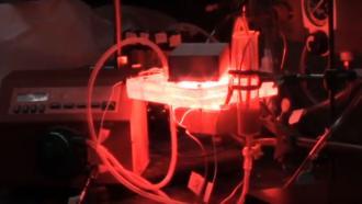 Светотерапия для лечения отравления угарным газом