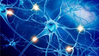 DARPA разработала систему для лечения нейропсихиатрических заболеваний