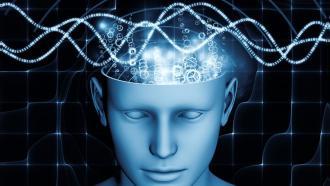 Восстановить потерянные функции мозга