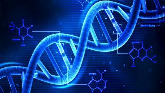 Nebula Genomics предлагает бесплатное генетическое тестирование
