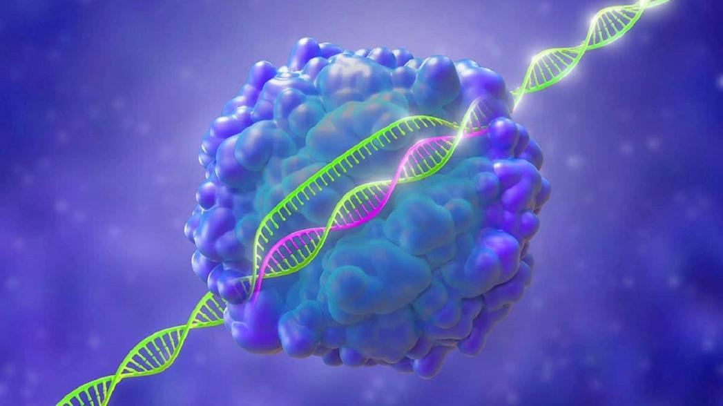 Устройство, позволяющее провести 1000 одновременных тестов для идентификации патогенов