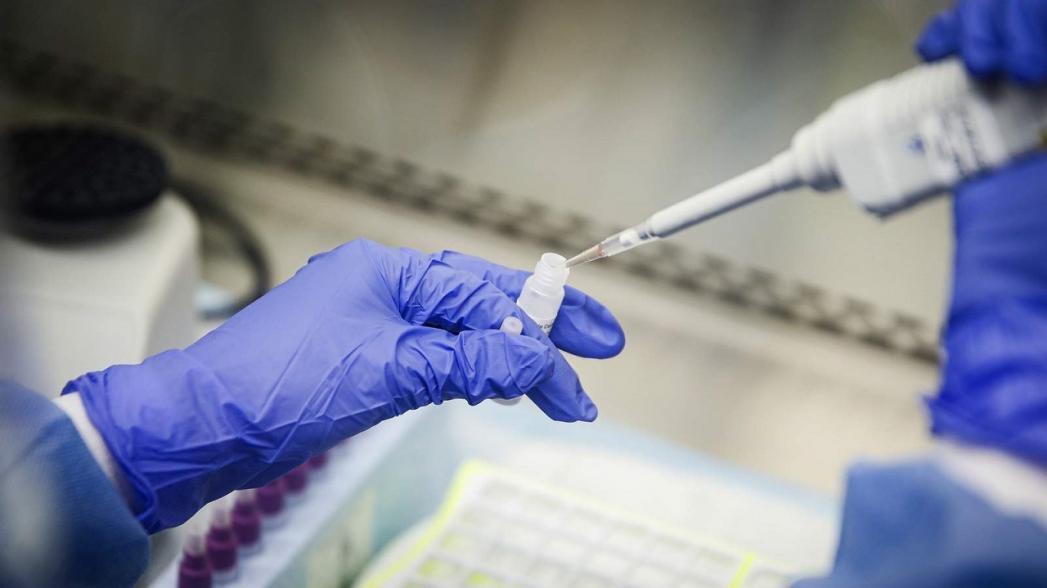 Health Gorilla обеспечивает заказ тестирования на коронавирус через веб
