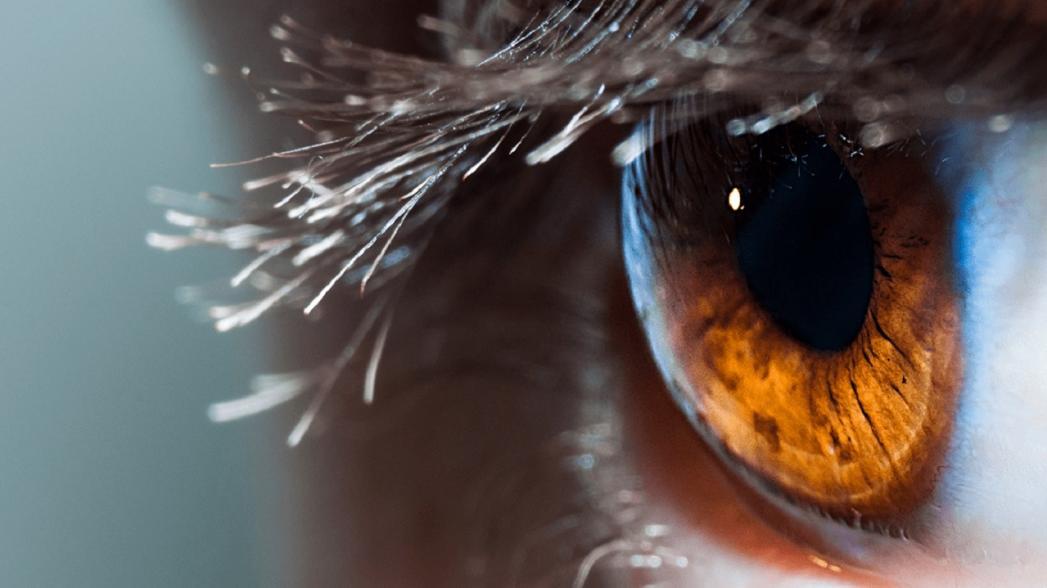 Использование AI для комплексной аннотации повреждений сетчатки глаза