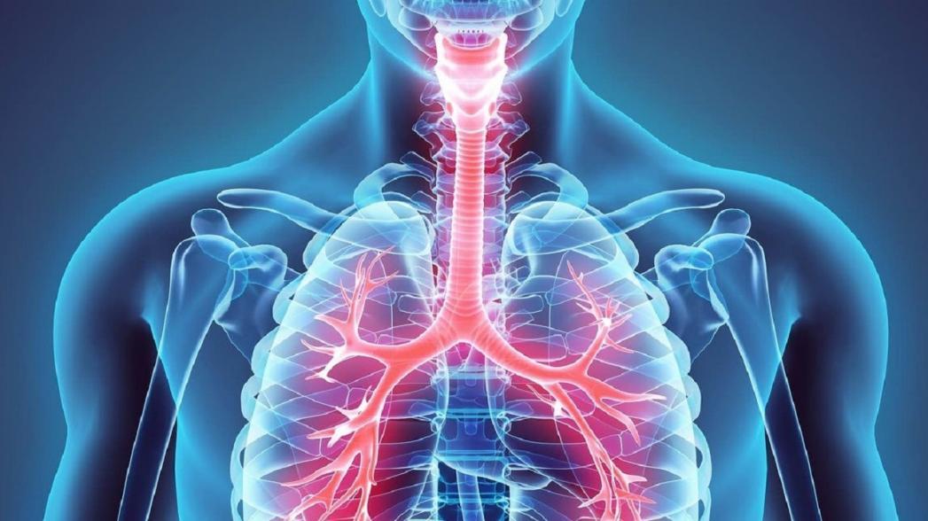 Ультразвук как метод неинвазивной оценки состояния легких