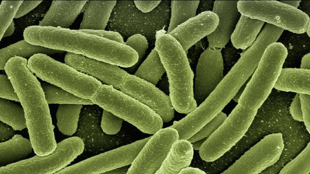 Viome: Система секвенирования микробиома для диагностики рака