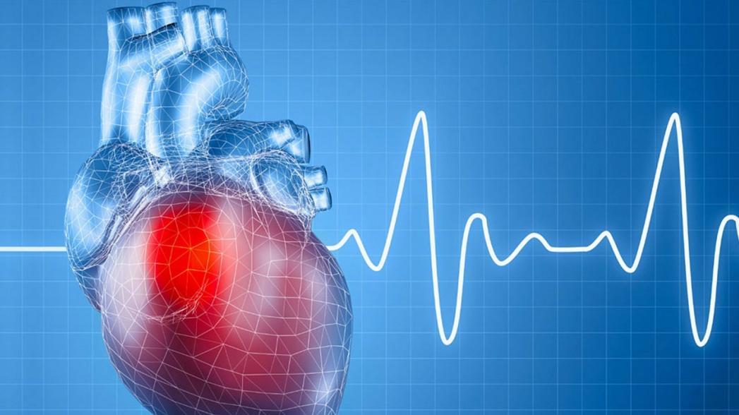 Оценить жесткость артерий, являющуюся маркером риска сердечно-сосудистых заболеваний, с помощью ультразвука
