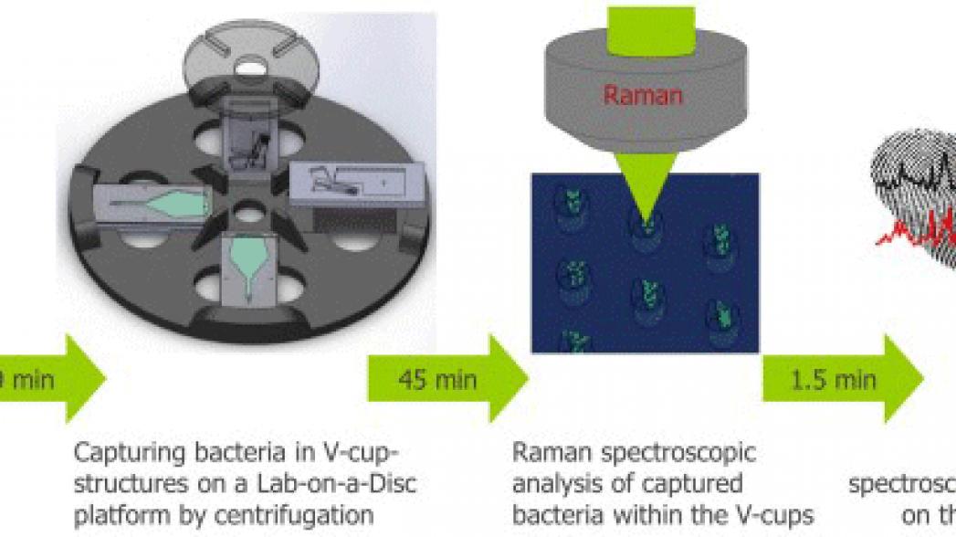 """""""Лаборатория на диске"""" для обнаружения инфекции мочевыводящих путей"""