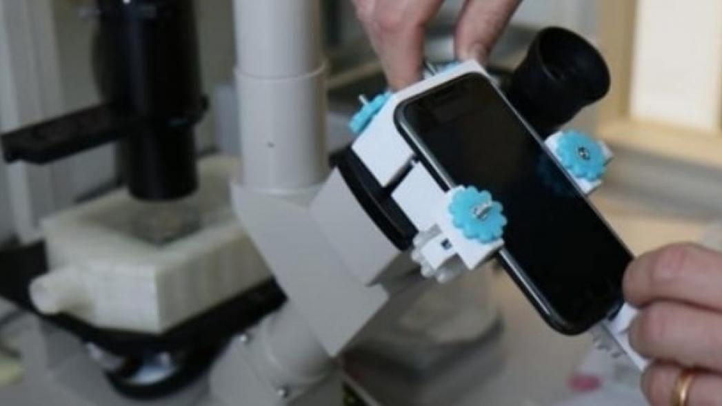 Видеосъемка живых клеток с помощью смартфона
