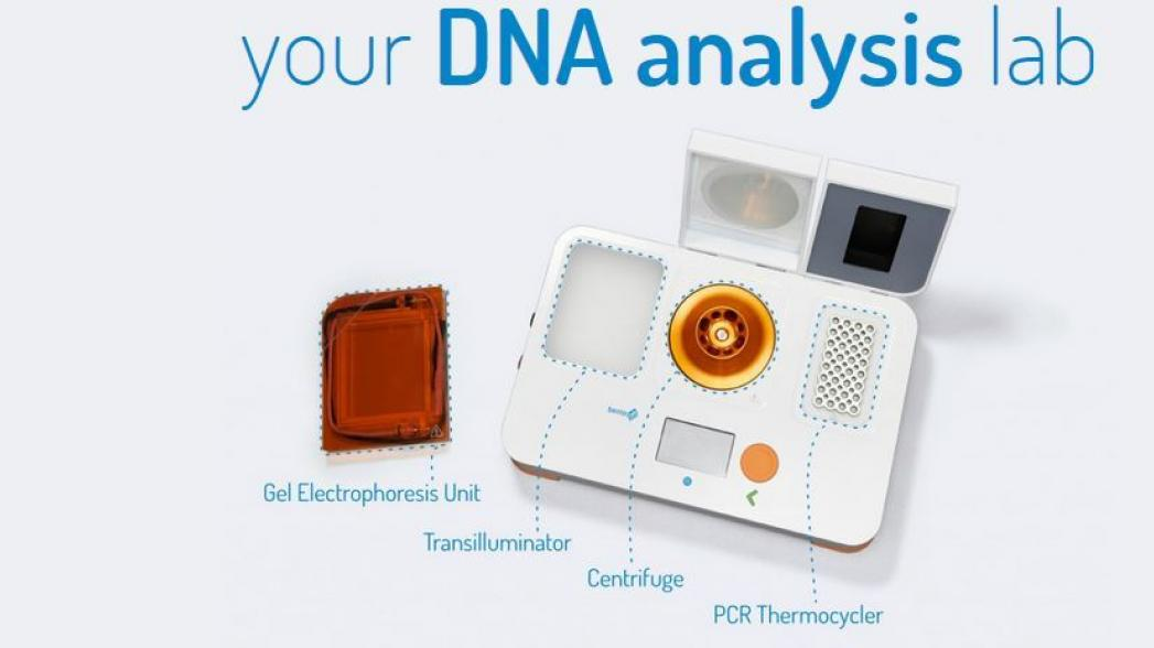 Анализ ДНК на кухонном столе