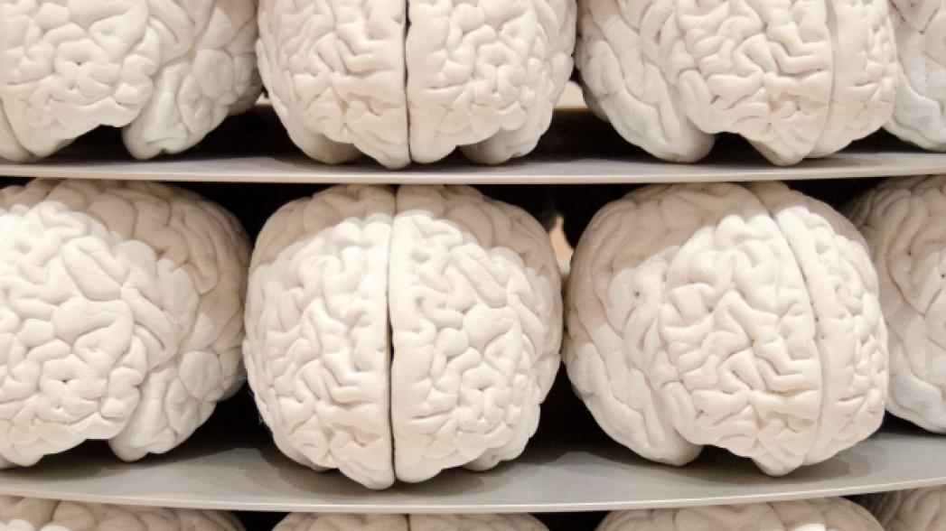 Устройство, позволяющее значительно улучшить память