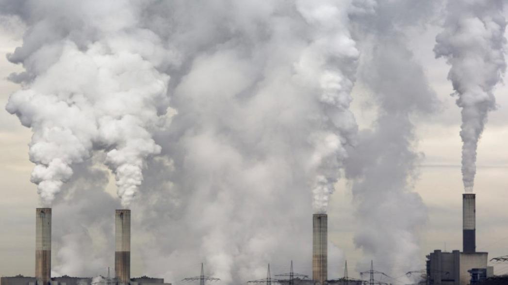 Биореактор, который поглощает углекислый газ как роща размером в акр