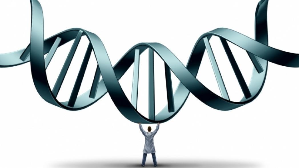 Стэнфорд и Google создают новый геномный сервис