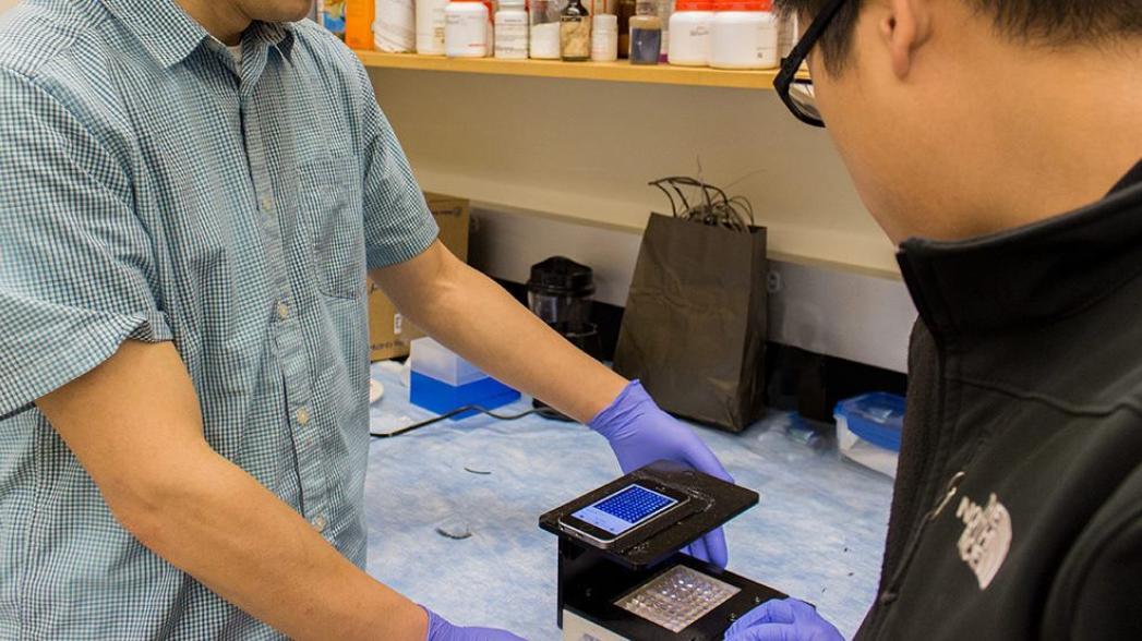 Детектор инфекции на базе смартфона, работающий с клинической точностью