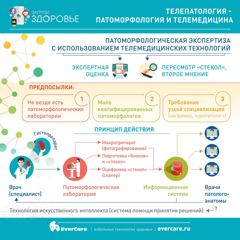 Телепатология - патоморфология и телемедицина. Инфографика